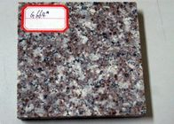 OEM Size Granite Modular Kitchen Tiles , Hotel Grey Granite Bathroom Tiles