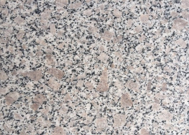 GranitE G383 Material Bianco Antico Granite Slab Grey Flower Pearl Color